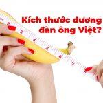 Chiều dài và đường kính dương vật người Việt là bao nhiêu?